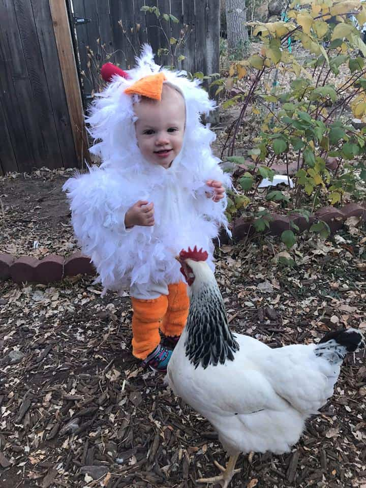 What a clever idea! diy chicken costume for toddler  sc 1 st  Penlights to Pacifiers & Halloween Costumes for Babies and Toddlers - Penlights to Pacifiers
